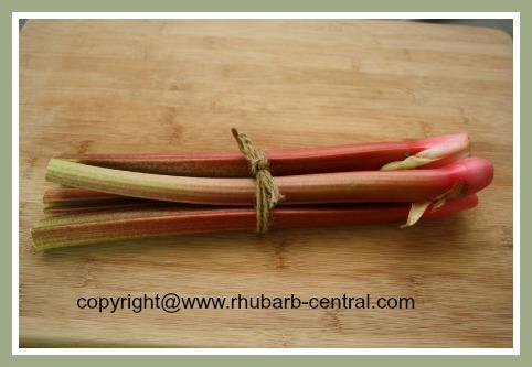 Rhubarb Plant Stalks