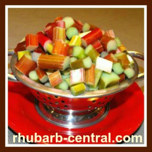 how to make rhubarb syrup